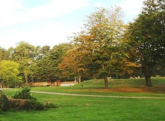 5.5.acres of open parkland in Hotham Park